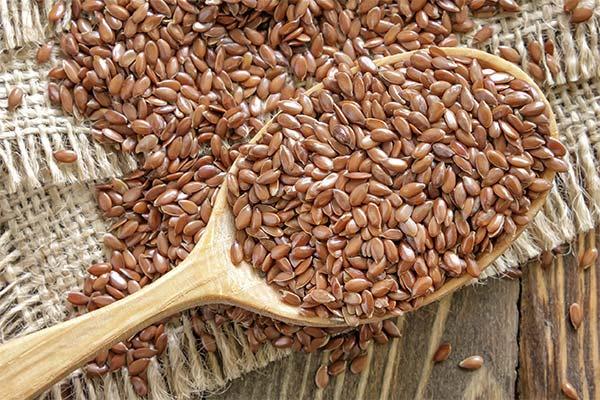 Интересные факты о семенах льна