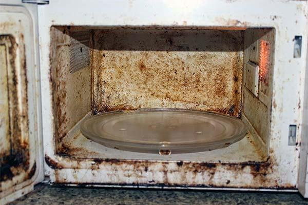 Как часто нужно мыть СВЧ-печь