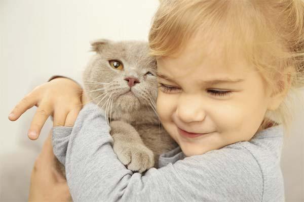 Как узнать заранее, есть ли аллергия на кошек