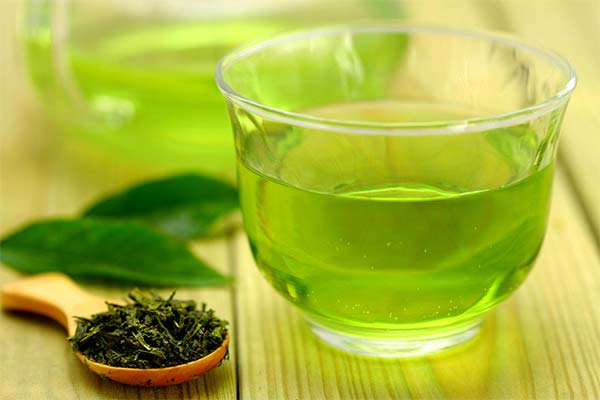 Как зеленый чай помогает похудеть