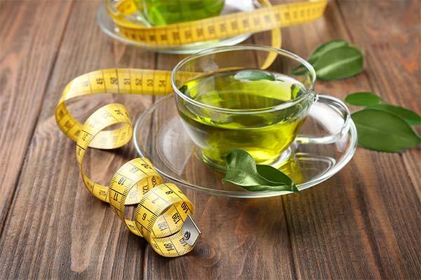 Можно ли похудеть с помощью зеленого чая