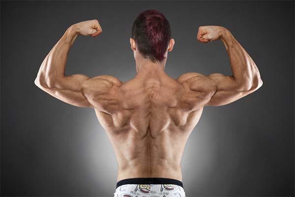 Основные нюансы прокачки плеч