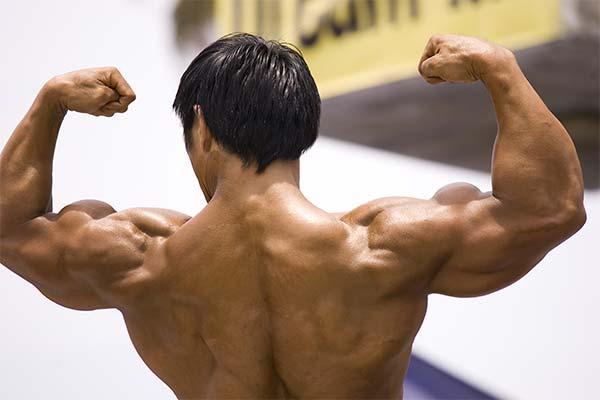 Примеры тренировочных программ для плеч